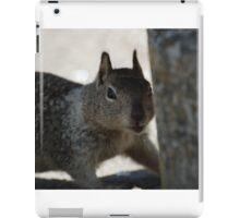 Went on Squirrel Hunt iPad Case/Skin