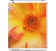 Peach and Yellow Rose iPad Case/Skin