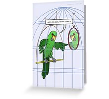Parrot Cage Fight Greeting Card