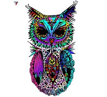 Colorful Mandala Ornament Owl Artwork T-Shirt by Cyrca Originals Photographic Print