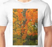 Orange & Yellow Tree Unisex T-Shirt