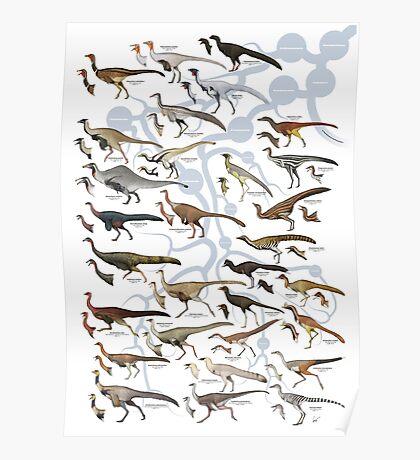 Ornithomimosaurs and Alvarezsaurs I Poster