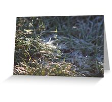Frosty Underfoot Greeting Card