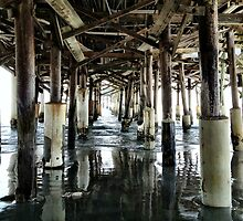 Under the Boardwalk by Ludwig Wagner