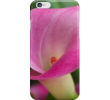 pink lily iPhone Case/Skin