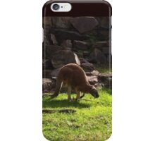 Hop and Go One iPhone Case/Skin