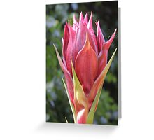 Giant Flower Bud Greeting Card