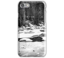 Sequoia national park, USA in black and white iPhone Case/Skin