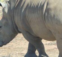 Black Rhinoceros Sticker