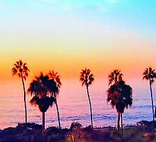 Multiple Palm trees in an Amazing Sunset!  by Princess1222