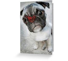 Funny dog Greeting Card
