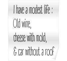 I have a modest life Poster