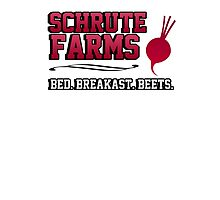 Schrute farms beets. Bed, breakfast beets. Photographic Print