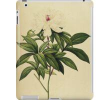 Paeonia Albiflora iPad Case/Skin