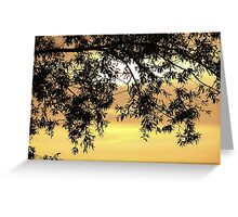 Sunset behind the tree Greeting Card