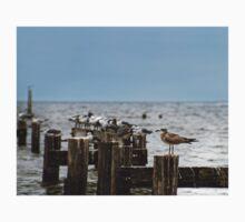 Seagulls on the Pier Kids Tee