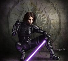 Sword of the Jedi by Svenja Gosen