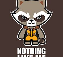 Talking Raccoon by JolleyRoger