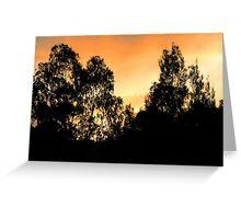 Sunset behind dark trees Greeting Card
