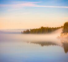 Foggy Morning by Marzena Grabczynska Lorenc