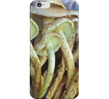Yellow Oyster Mop Mushrooms iPhone Case/Skin