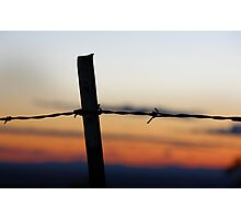 Old 32 Barbed Wire Fence Photographic Print