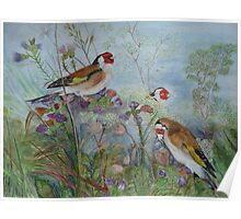 JUST FOR ME ... GOLDFINCHES... Poster