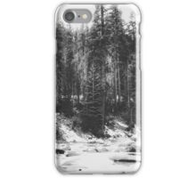 snow at Sequoia national park, USA in black and white iPhone Case/Skin