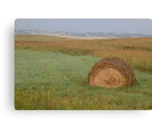 Field of View Canvas Print