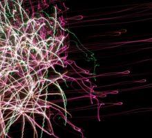 Fireworks on a black sky Sticker