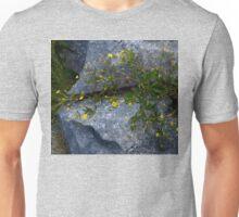 Tormentil, Dun Aengus, Inishmore, Aran Islands Unisex T-Shirt