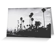 palm trees with sunlight in black and white Greeting Card