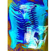 PALMS BY ART AND SOUL MAMMA Photographic Print