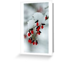 Snowy Red Fruit Greeting Card