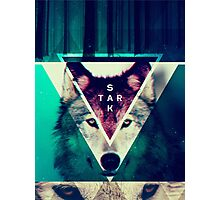 House Stark Hipster design Photographic Print