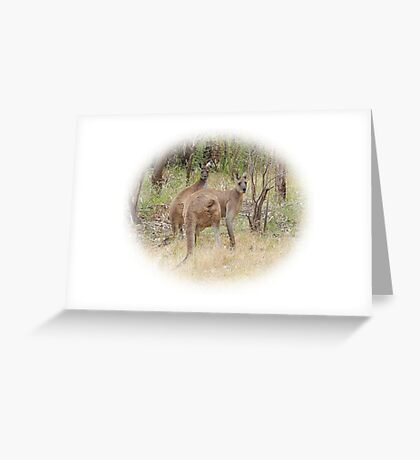Kangaroos in the Park Greeting Card