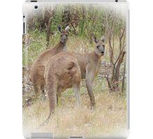 Kangaroos in the Park iPad Case/Skin
