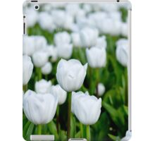 White tulips in a field iPad Case/Skin