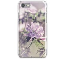 Malva moschata or musk mallow iPhone Case/Skin