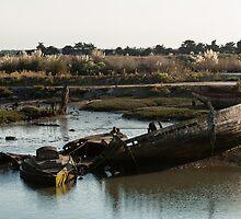 Wrecks (Île de Noirmoutiers - Vendée, France) by Mathieu Longvert