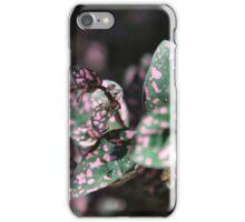 Backyard Polkadot iPhone Case/Skin