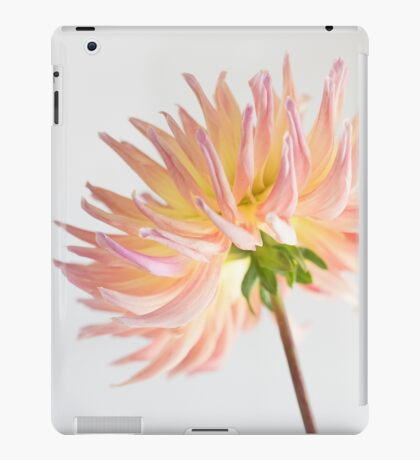 peach dahlia burst iPad Case/Skin
