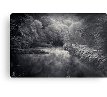 River in Black and Silver Metal Print