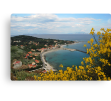 orthoni Canvas Print