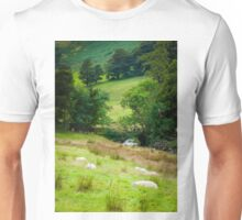 View of English sheep in countryside, UK Unisex T-Shirt