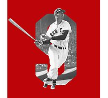 Teddy Ballgame Photographic Print