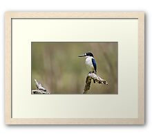 Waiting Patiently Framed Print
