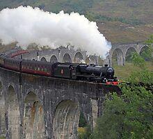 The Jacobite Steam Train by Maria Gaellman