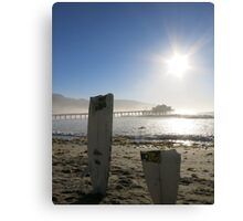 Broken Surfboard Canvas Print