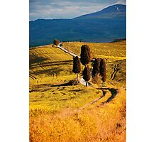 Golden fields of Toscany Photographic Print
